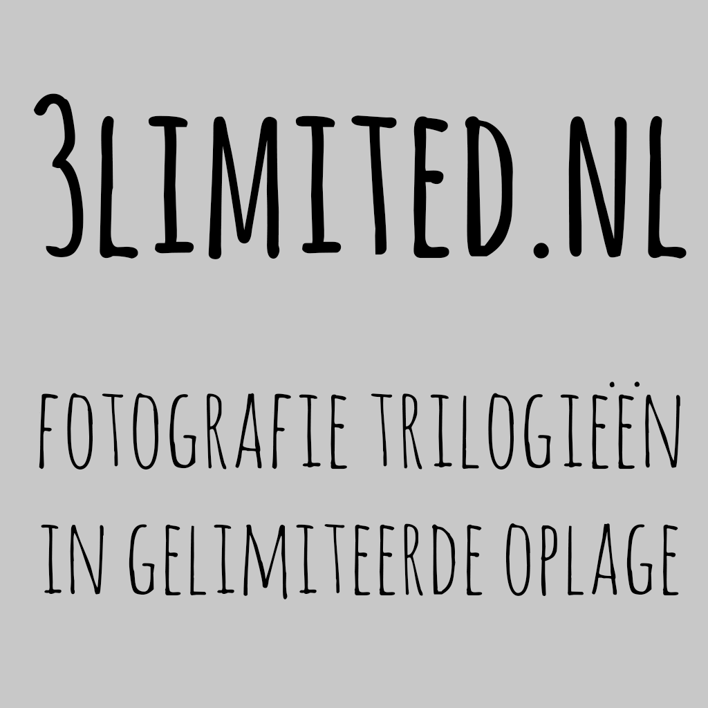 3limited.nl